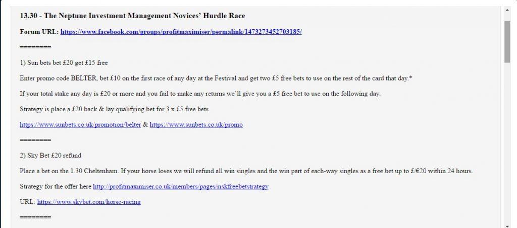 Cheltenham Festival Profit Maximiser